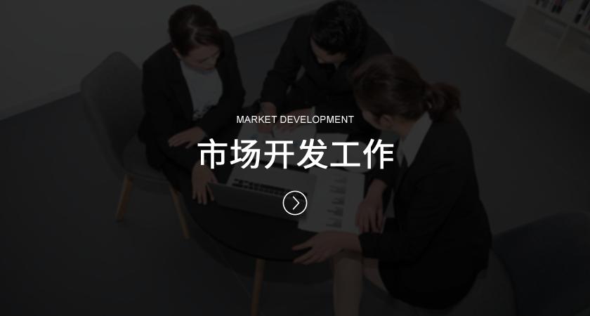 市场开发工作